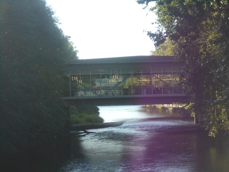 Renton Library