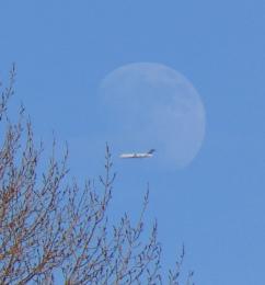moon, plane II